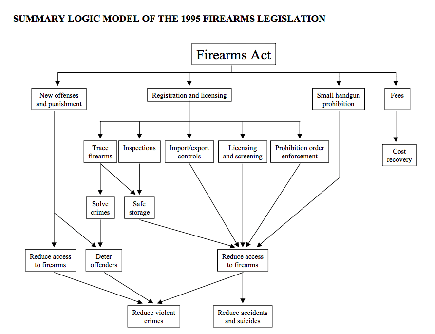 Summary Logic Model 1995 Firearms Act